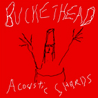 buckethead: Acoustic Shards