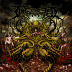 ingested: Surpassing the Boundaries of Human Suffering