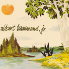 albert hammond jr: Yours To Keep