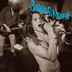soundgarden: Screaming Life