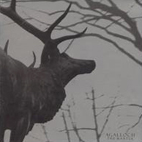 agalloch: The Mantle
