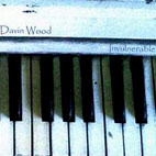 Davin Wood: Invulnerable