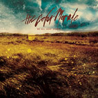 The Color Morale: We All Have Demons