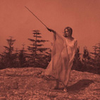 unknown mortal orchestra: II