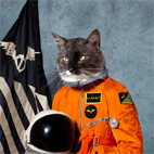 Klaxons: Surfing The Void