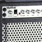 Washburn: Bad Dog 30