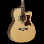 Tanglewood: TW170 AS CE