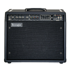 Mesa Boogie: Mark IV