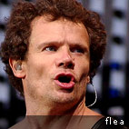 Flea Goes Mad In Interview