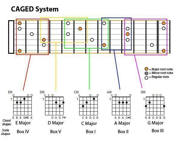 Guitar guitar chords root notes : The Ultimate Guide To Guitar. Chapter II: 2 Scales - Diatonic ...
